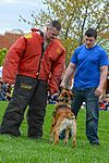 Month of Military Child MWD demonstration 150414-F-OH119-001.jpg