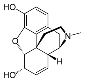 Structural formula of morphine