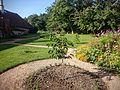 Morušová zahrada.jpg