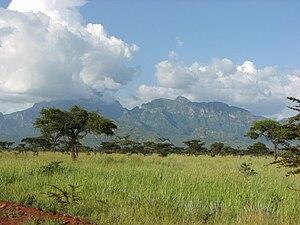 Uganda - Mount Kadam, Uganda.