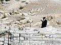 Mount of Olives - Jerusalem, Israel (4025838680).jpg