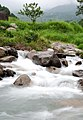 Mountain Stream (8124953238).jpg