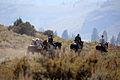 Mountain Warfare Training Center teaches advanced horsemanship 130905-M-EV518-2736.jpg