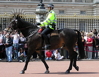 Mounted police - A mounted police officer passes Buckingham Palace, London
