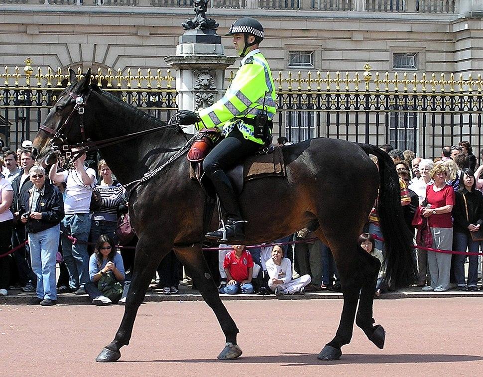 Mounted.police.buckingham.palace.arp