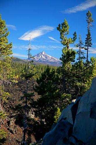 Mount Jefferson (Oregon) - A coniferous forest near Mount Jefferson (Jefferson visible in the background)