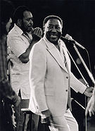 Muddy Waters -  Bild