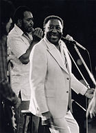 A photograph of Muddy Waters performing live at The Ontario Place, Toronto in June 1978. To the far left of Waters stands harmonica player James Cotton.