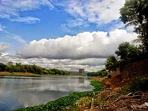 Mula River (India) - Mula River from the west bank
