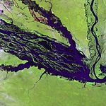 Satellite image of a wide river and smaller meandering tributaries running through a light green landscape.