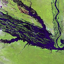 Satellite picture of part of lake Jaú.