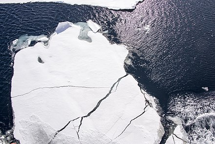The dark ocean surface reflects only 6 percent of incoming solar radiation, whereas sea ice reflects 50 to 70 percent. NORTH POLE Ice (19626661335).jpg
