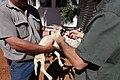 Namibia 2017-06 (075) Markieren eines Swakara-Lamms mit Ohrmarke..jpg