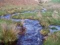 Nant y Mynyllod - geograph.org.uk - 317045.jpg