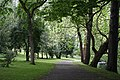 National Botanic Garden,Dublin,Ireland - panoramio (24).jpg