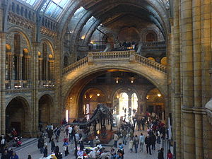 The Central Hall in Natural History Museum, London