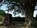 Naturdenkmal Linde Neuenkirchen Melle -Neben der Linde- Datei 1.jpg