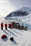 Neko Harbour Antarctica 8 (33461052178).jpg
