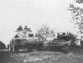 New Zealand Divisional Cavalry Staghounds San Giorgio de Cesena.png
