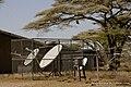 Ngorongoro, Tanzania - panoramio (16).jpg