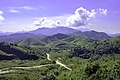 Noen Chang Suek Thong Pha Phum National Park.jpg
