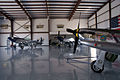 North American P-51D Mustangs Dixie Boy LNose Crazy Horse and Crazy Horse 2 LSideFronts Stallion51 11Aug2010 (14797345867) (2).jpg