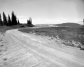 North view on the rim road at Cedar Breaks National Monument, before the 1960 construction project. Taken as a record of the (ee6f328b53d24eaeb97259ae564ec4be).tif