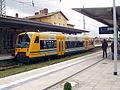 ODEG 650.63 in Eberswalde.jpg
