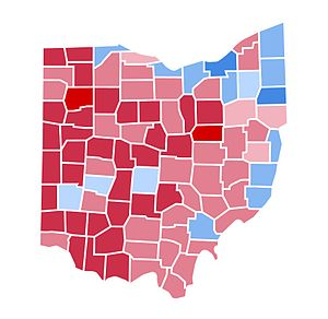 United States presidential election in Ohio, 2000 - Image: OH2000