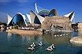 Oceanogrâfic 29102009.jpg