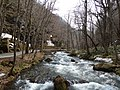 Oisase stream , 奥入瀬渓流 - panoramio (10).jpg