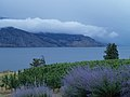 Okanagan Lake - panoramio.jpg