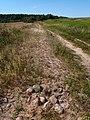Old stone road near Kičyna - panoramio.jpg