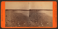 On the First Beach, Newport, R.I, by Soule, John P., 1827-1904.png