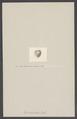 Opis dilatatus - - Print - Iconographia Zoologica - Special Collections University of Amsterdam - UBAINV0274 005 07 0043.tif