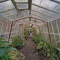 Overzicht interieur kas, openstaande vensters in het dak - Leens - 20405674 - RCE.jpg