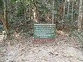 P59 Lawachara National Park, In Moulovibajar, Bangladesh.jpg