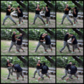 Panantukan sequence.png