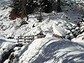 Panorama invernale Val di Casies 3.JPG