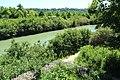 Parc départemental de la Haute-Île à Neuilly-sur-Marne le 25 mai 2017 - 07.jpg