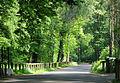 Parco di Monza - panoramio - Zhang Yuan (3).jpg