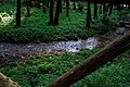 Parco naturale regionale delle Serre 22.jpg