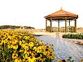Park Alavi گلکاری در بوستان علوی قم.jpg
