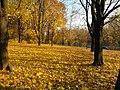 Park akademicki jesienią - panoramio.jpg
