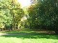 Park na Zdrowiu.jpg