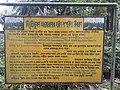 Parmadan Forest 06.jpg