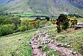 Path descending into Wasdale from Lingmell Gill - geograph.org.uk - 1331572.jpg