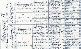 Pedigree chart - Pedigree of horse Shagya IX b. 1895