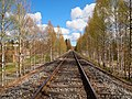 Petäjävesi - train track.jpg