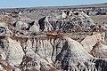 Petrified Logs in top of badlands.jpg